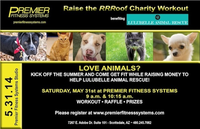 Premier Fitness Systems Charity Event